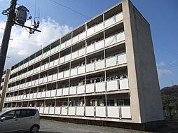 ビレッジハウス広江 1号棟[402号室]の外観
