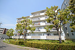 大阪府堺市西区草部の賃貸マンションの外観