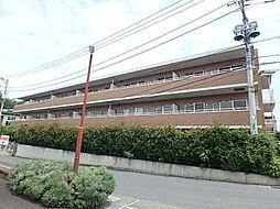 埼玉県上尾市大字原市の賃貸マンションの外観