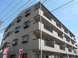 埼玉県三郷市高州3丁目の賃貸マンションの外観