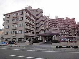 シャルマンコーポ駅南[501号室]の外観