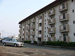 コーポ皿山[4階]の外観