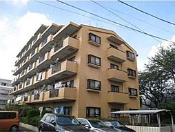 神奈川県横浜市緑区十日市場町の賃貸マンションの外観