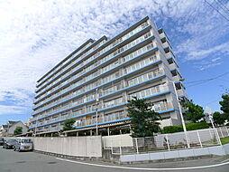 ローズヴィラ東加古川[6F号室]の外観