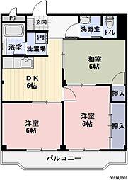 愛知県岩倉市曽野町の賃貸マンションの間取り