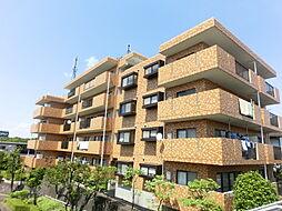 サンライフ荏田[4階]の外観