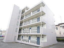 神奈川県伊勢原市粟窪の賃貸マンションの外観