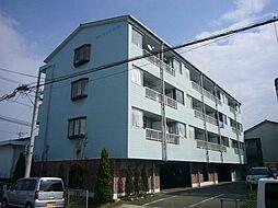 徳島県徳島市北沖洲3丁目の賃貸マンションの外観