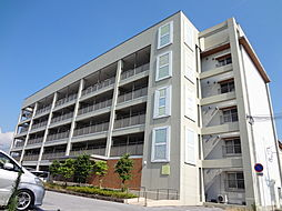 滋賀県長浜市八幡東町の賃貸マンションの外観