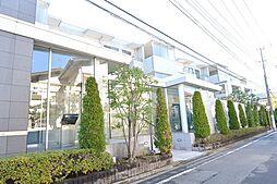 京王線 中河原駅 徒歩11分の賃貸マンション