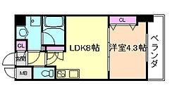 松ヶ枝町プライマリーワン[4階]の間取り