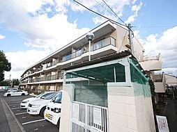 神奈川県座間市栗原中央1丁目の賃貸マンションの外観