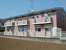 シティハイツSUZUKI3[202号室]の外観