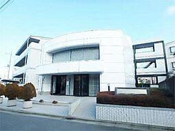東京都日野市大字石田の賃貸マンションの外観