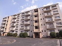 野間台住宅8棟[813号室]の外観