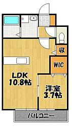 パインツリー賀茂4丁目 1階1LDKの間取り