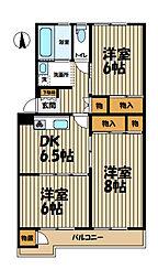 前田ハイツ12号棟[1251号室]の間取り