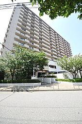 綾瀬駅 11.8万円