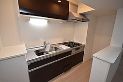 グリーンロード楠葉IIのキッチン