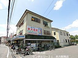 大阪府枚方市星丘4丁目の賃貸マンションの外観