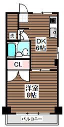 東京都杉並区松庵3丁目の賃貸マンションの間取り