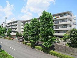 江田駅 11.5万円
