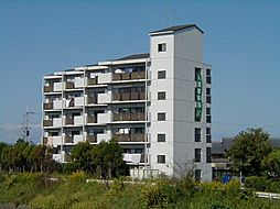 滋賀県彦根市芹町の賃貸マンションの外観