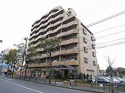 シェニートモンチーク武蔵関[4階]の外観