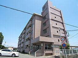 米倉ビル[4階]の外観