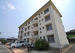 樋井川コーポ200棟[231号室]の外観