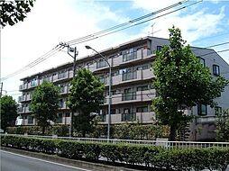 神奈川県横浜市瀬谷区南台1丁目の賃貸マンションの外観