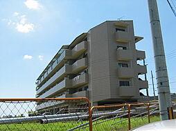 大阪府寝屋川市高倉2丁目の賃貸マンションの外観