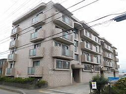 神奈川県海老名市大谷北1丁目の賃貸マンションの外観
