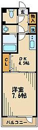 アネシス 4階1DKの間取り