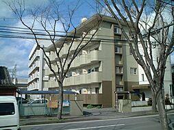 サンハイツ三嶋[402号室]の外観