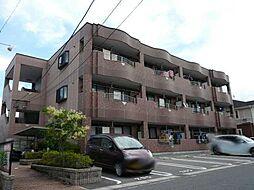 愛知県岡崎市井田南町の賃貸マンションの外観