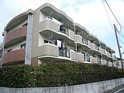 神奈川県平塚市公所の賃貸マンションの外観