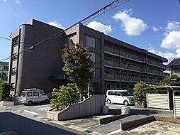 滋賀県長浜市南呉服町の賃貸マンションの外観