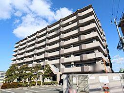 エクレール箱崎[7階]の外観