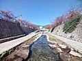 都賀川公園 5...