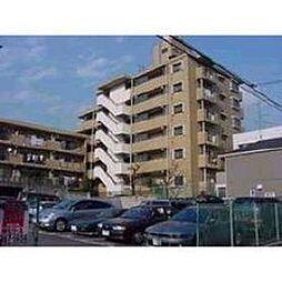 ペルリーノ武蔵関E[5階]の外観