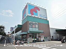 山田池住宅6号棟[4階]の外観