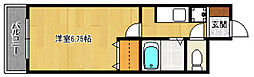 マイカ西新[503号室]の間取り