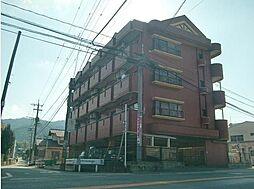 コーポラス坂井[407号室]の外観