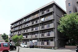 愛知県豊橋市東幸町字大山の賃貸マンションの外観