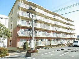 滋賀県守山市吉身5丁目の賃貸マンションの外観