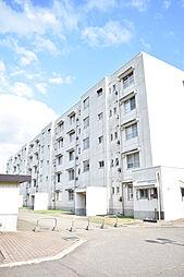 新井駅 4.5万円