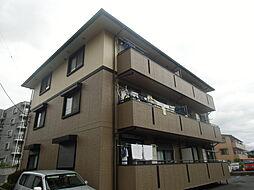 サンライトスクウェア弐番館[1階]の外観