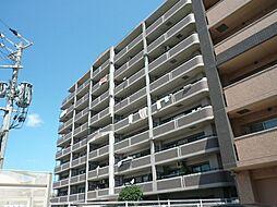 アムール長者原駅前[4階]の外観