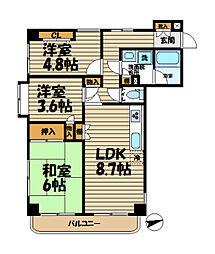 LIVE[208号室]の間取り